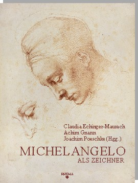 short essay on michelangelo In the beginning his father seemed to try and help out but to my surprise david's father's help was short michelangelo's david michelangelo vs bernini essay.